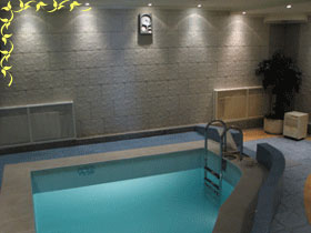 Swimming-pool in our sauna